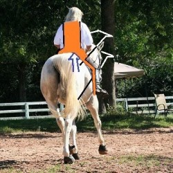 The real meaning of straightness in the horse
