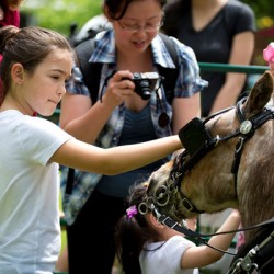 Horse Day to honor Canada's equines
