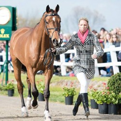 US horse declared best presented at RK3DE