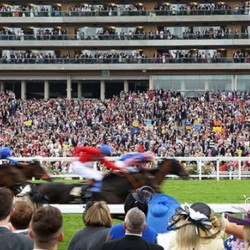 Sweden's racehorses benefit from anti-doping policy in Britain