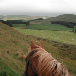 'Use it or lose it' message over off-road horse riding