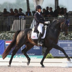 US dressage rider saddles up for equine charity