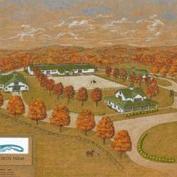 Huge new facility under way for racehorse retraining