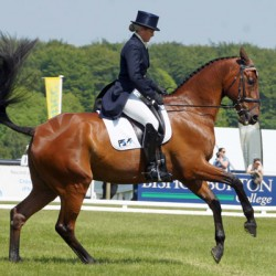 Classy Brits in top four after Bramham horse trials dressage