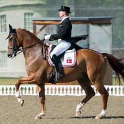 Denmark makes mark in Hickstead Nations Cup closer