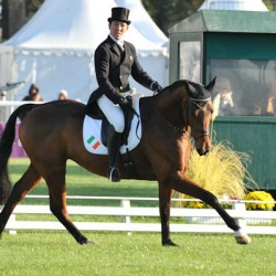 Aussie leads Ireland's Camphire horse trials feature class
