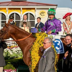 Bits and pieces: California Chrome in the wars