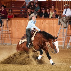 Germany, Italy dominate European Reining champs for youngsters