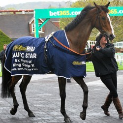 Kauto Star's ashes bound for Kempton Racecourse
