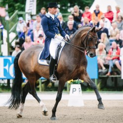 Sweden savours home victory in Nations Cup dressage