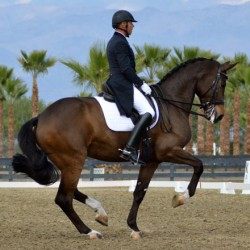 USA's leading dressage rider for showjumping event