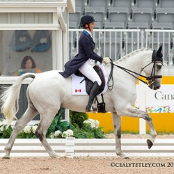 US in slender lead after Pan Am Games eventing dressage