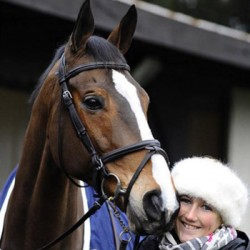 Paddock injury claims life of famous OTTB Kauto Star