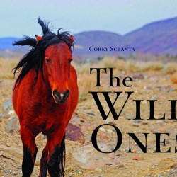Corky Scranta's new book The Wild Ones tells of the history and politics of the struggle for survival by the mustang.