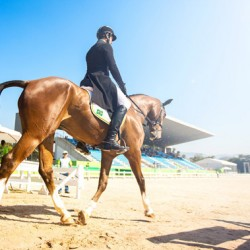 Eventers complete dressage in Rio Olympic test event