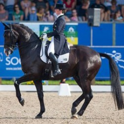 Germany hot favourite for European Dressage Champs