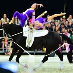 Double gold for Austria at inaugural junior Vaulting champs