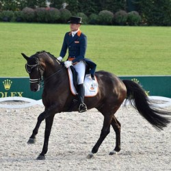 Researchers examine training routines of professional dressage riders