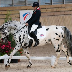 Dutch top medal table at European para-equestrian champs
