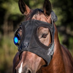 Company that makes light masks for mares targets US market