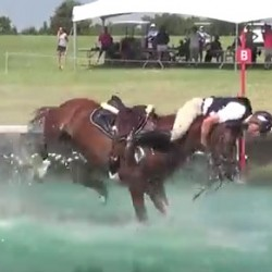 Sticking with it: Eventer defies Law of gravity