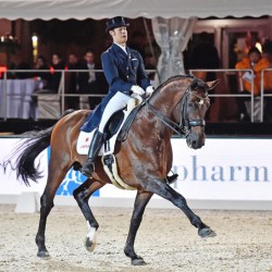 Japan qualifies dressage team for Rio Olympics
