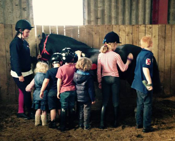 Every pony's dream: Dandy gets a major grooming from youngsters at the Wrea Green Equitation Centre on Sunday.