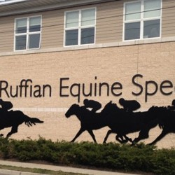 New leader for NY's Ruffian Equine clinic