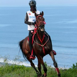 Bahrain dominates young rider Endurance champs