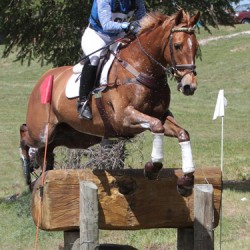 Eventing Super League shakeup after NZ eventing champs