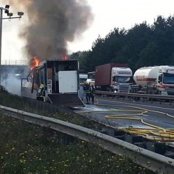 Horse in Britain rescued as transporter erupts in flames