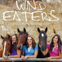 NZ's wild horses travel to NY film festival