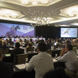 FEI General Assembly suspends Kuwait's equestrian federation