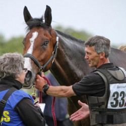 Challenges lie ahead in building media coverage of equestrian sports