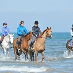Beachside venue for young riders' European Champs