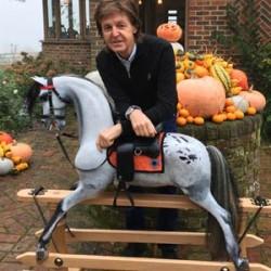Off his rocker: Paul McCartney's appaloosa immortalised for charity